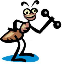 E 39 possibile eliminare le formiche senza prodotti tossici for Esche per formiche